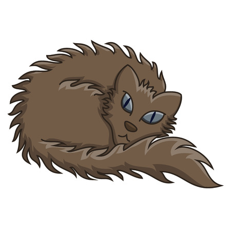 brown haired: Dark Brown Fluffy Cat. Vector illustration of fluffy cat with soft wool, transparency and blending modes