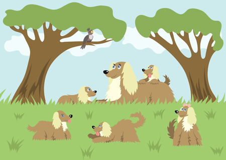 Fluffy dog and her puppies Vector