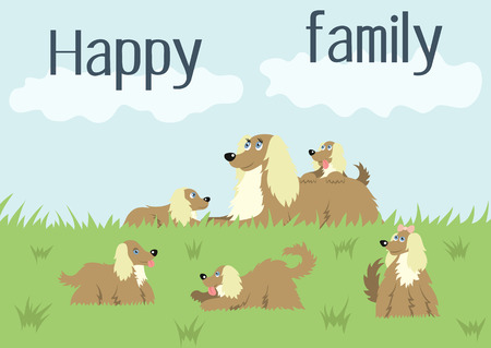 afghan hound: Happy family card with dog and puppies