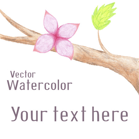 Vector hand-drawn background with watercolor flower on branch