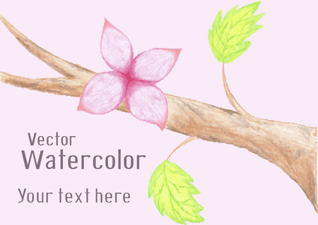 Gentle watercolor flower on branch Vector