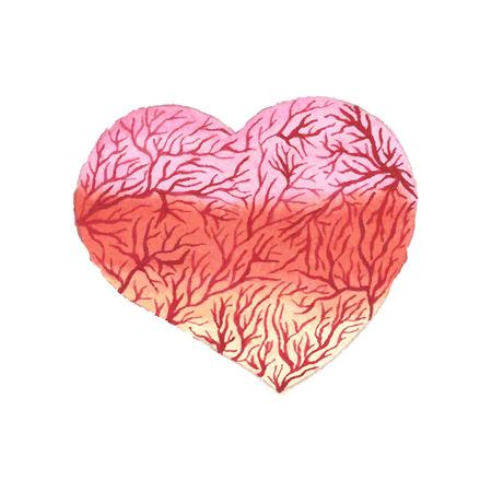 capillaries: Watercolor heart with capillaries