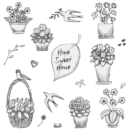 balsam: Hand drawn indoor plants in a pots, gloxinia, abutilon, hydrangea, balsam, tulip, geranium, streptocarpus, flowers in vases and swallows sketch, vector illustration Illustration