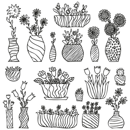 black and white flower: Hand drawn indoor plants in a pots, gloxinia balsam tulip aster daisy sunflower grass cactus camomile hand bell flowers in vases sketch, vector illustration