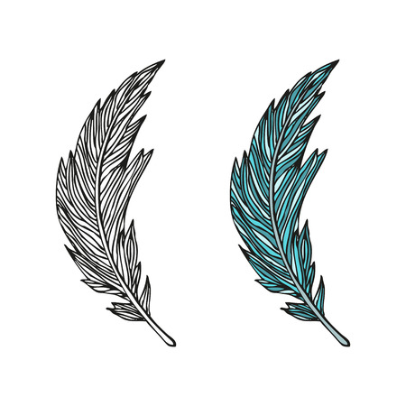 doodling: Doodling hand drawn amazing feathers with patterns