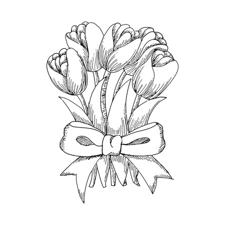 tied up: Hand drawn bouquet of tulips tied up by a ribbon, cute doodling flowers sketch, vector illustration Illustration