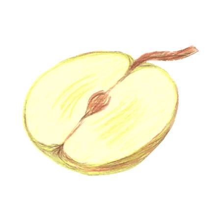 manzana verde: Bosquejo de la mitad de la manzana verde dibujado por l�pices de colores, ilustraci�n vectorial de mentiras de manzana Vectores