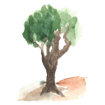 maldestro: Vecchio albero acquerello con fogliame verde arioso su goffa tronco ramificato marrone, albero rurali come melo, schizzo disegnato da acquerello