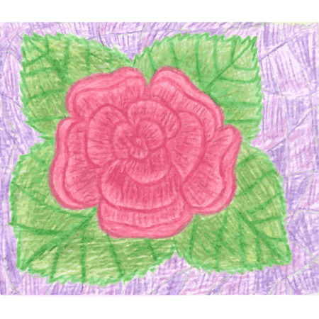 pencil drawings: Red rose with green leafs on violet background, blooming flower, romantic simple drawing, drawn by color pencils, vector illustration Illustration