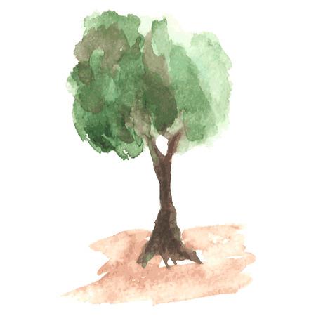 maldestro: albero acquarello Airy con fogliame verde che starnazza su un vento sul tronco marrone goffo, albero rurali come melo, schizzo disegnato da acquerello