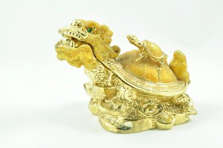Feng shui Golden Dragon Turtle photo