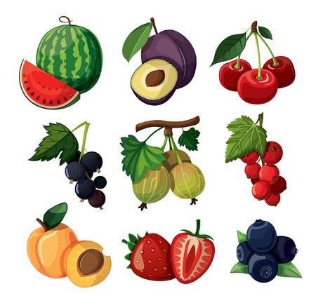 Eine Reihe von köstlichen Beeren auf weißem Hintergrund