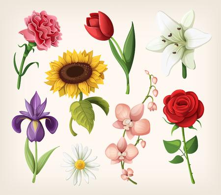 낭만적 인 여름 꽃 세트