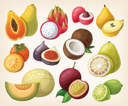 Set of exotic fruit. Çizim