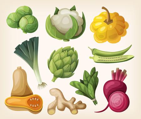 butternut squash: Set of exotic vegetables. Illustration