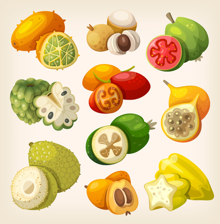 Exotic tropical fruit. Icons for labels and packages Illustration