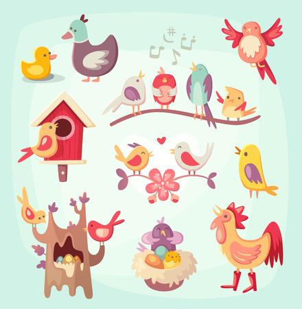 animal cock: Uccelli di primavera colorata canto, nidificazione e alzando nidiacei