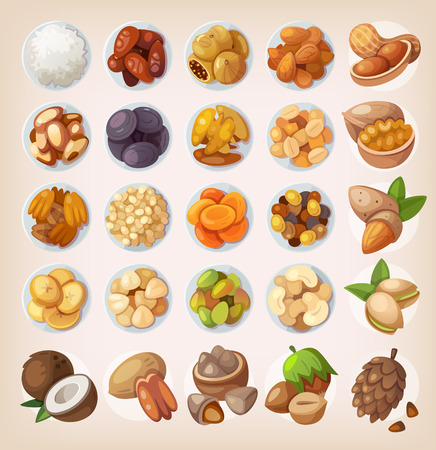 fruit illustration: Colorful set of dried fruit and nuts. Top view