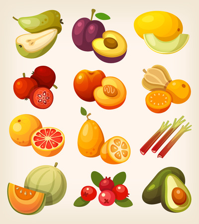 Exotic tropical, garden and field fruit. Icons for labels and packages or for learning kinds of fruit. Stock Illustratie