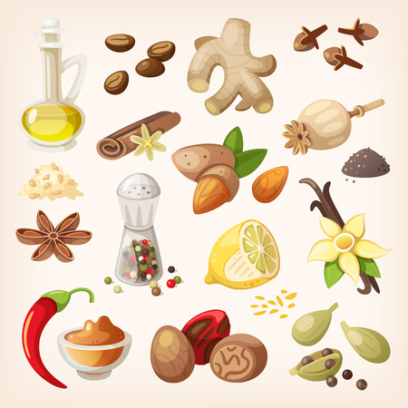 jengibre: Especias, condimentos y hierbas elementos decorativos e iconos.
