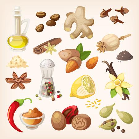 epices: Épices, condiments et les herbes des éléments décoratifs et des icônes. Illustration