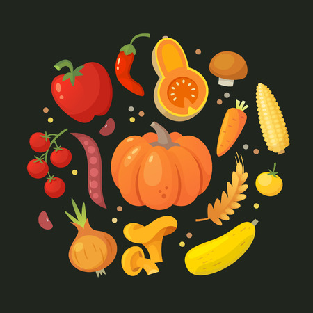 Red, orange and yellow vegetables arranged in circle. Vector illustration with dark background
