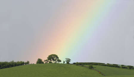 A rainbow descends to a sunlit, tree-lined hilltop photo