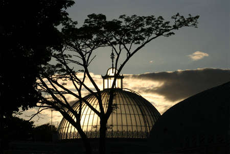 kibble: The newly refurbished dome of the Kibble Palace in Glasgow backlit by the setting Sun
