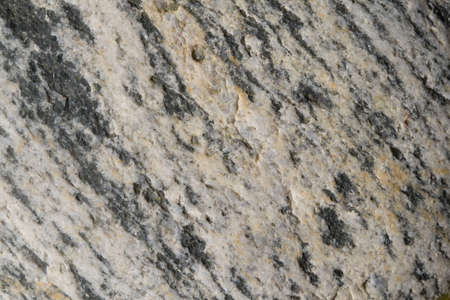metamorphic: Close-up of gneiss, a metamorphic and ancient rock Stock Photo