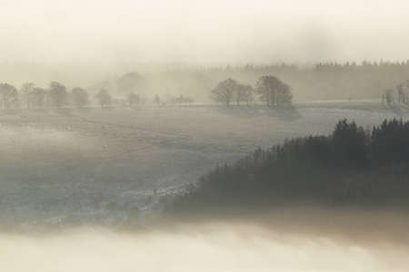 natural moody: Frozen sunlit Scottish winter landscape rising above the mist