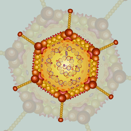 Adeno virus. Background. Illustration.