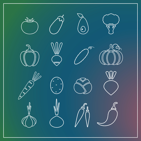 White contour isolated vegetable icon set on trendy background. Vector illustration with symbol of onion, eggplant, pepper and other vegetables for fresh eco product symbols or organic market logo.