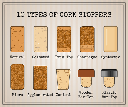 Vector set with 10 types of cork stoppers. Isolated cork with black contour and title for each kind on retro style background. Vintage illustration for vineyard presentation or promo material.