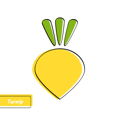 Flat design vegetable education card. Vector illustration with solid yellow isolated turnip or rutabaga, black outline and label on white background.