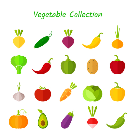 Stylish design vegetable isolated icon set.