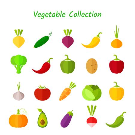 Stylish design vegetable isolated icon set.