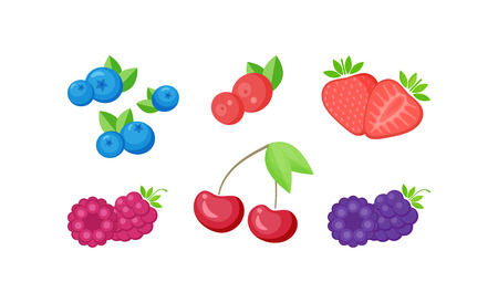 Isolated fresh berries with slices collection vector illustration. Set of natural berries on white background with delicious slices for beverage season offer or cafe menu promotion