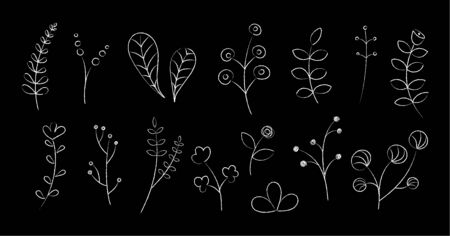 Hand drawn flowers and plants sketched vector illustration. Group of sketch flower silhouettes, white chalk style drawings isolated on blackboard for wedding invitation or elegant plant decoration