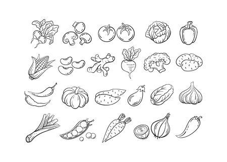 Croquis de légumes icon set vector illustration. Légumes de croquis de contour de ligne noire, tomate et oignon, icône de doodle de pomme de terre et de poivre sur fond blanc pour la conception vintage de menu de restaurant