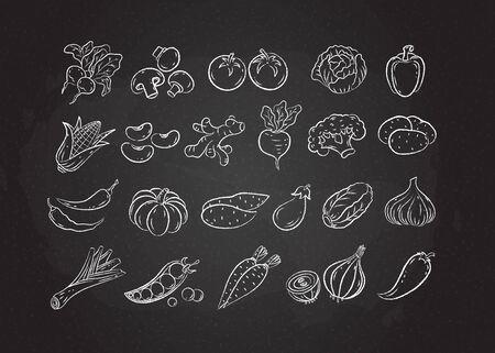 Chalked sketch vegetable icon set vector illustration. White chalk style line hand drawn vegetables, tomato and onion, garlic and mushroom sketch icon on blackboard for restaurant menu promo design Ilustracje wektorowe