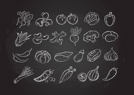 Chalked sketch vegetable icon set vector illustration. White chalk style line hand drawn vegetables, tomato and onion, garlic and mushroom sketch icon on blackboard for restaurant menu promo design