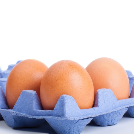 Brown chicken egg closeup in the tray Stock Photo - 17918038