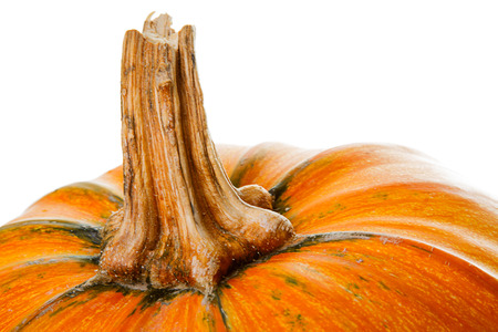 A piece of orange pumpkin close up on white background. Selective focus on stem. Stock Photo