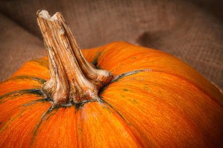 A piece of orange pumpkin close-up on sackcloth. Selective focus on stem.