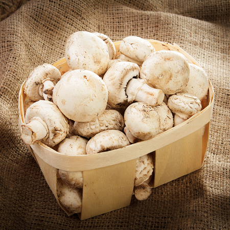 Mushrooms in a wooden box on sacking
