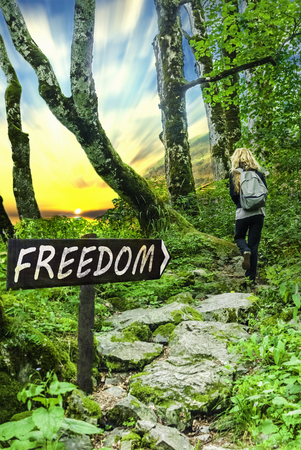 Freedom motivational phrase on wooden sing with person walking on forest stone road into the sunset. Copy space. Change concept.