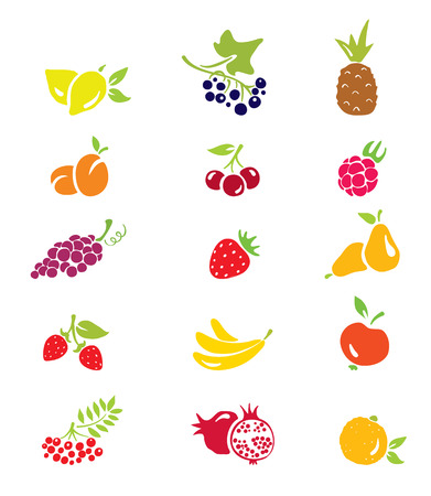 Icons - fruits and berries Illustration