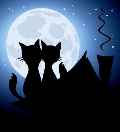 house cat: Cats and a full moon