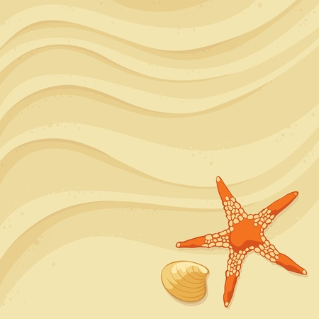 sand grains: Starfish in the sand