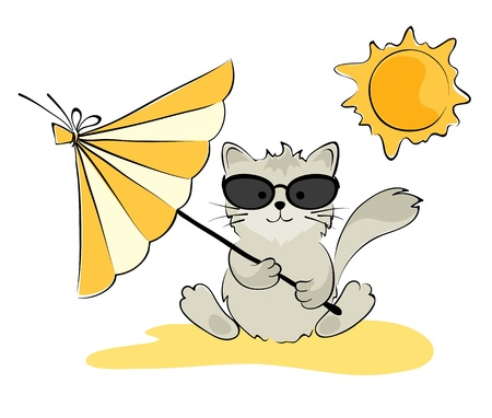 sun tan: Cat in the glasses on the beach